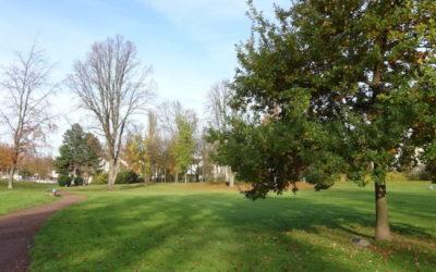 Pressemitteilung der Stadt Bochum zum Park am Ehrenmal